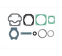 Прокладки с клапанами компресcора  1100170100